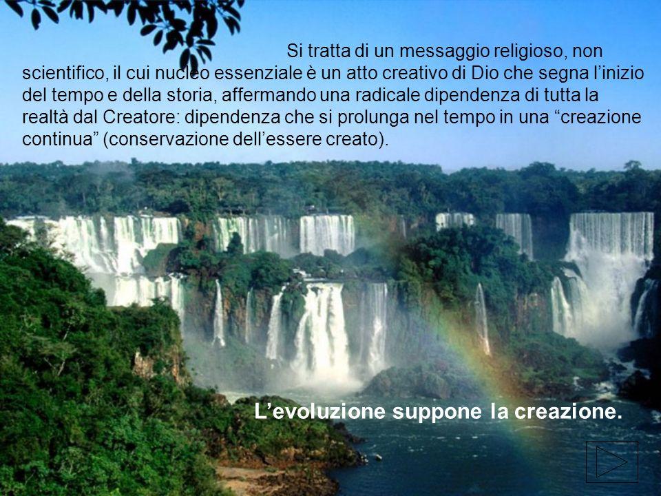 Si tratta di un messaggio religioso, non scientifico, il cui nucleo essenziale è un atto creativo di Dio che segna linizio del tempo e della storia, a