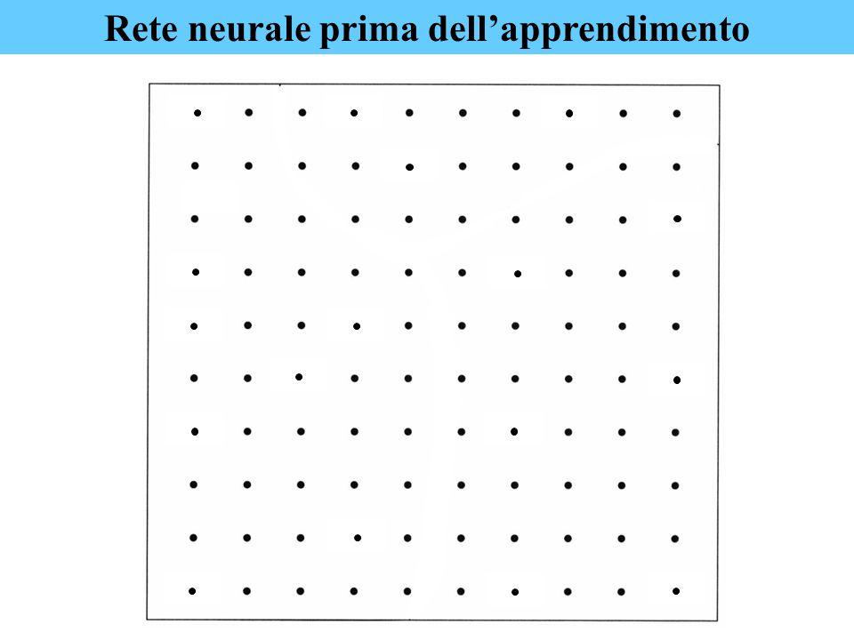 Rete neurale prima dellapprendimento