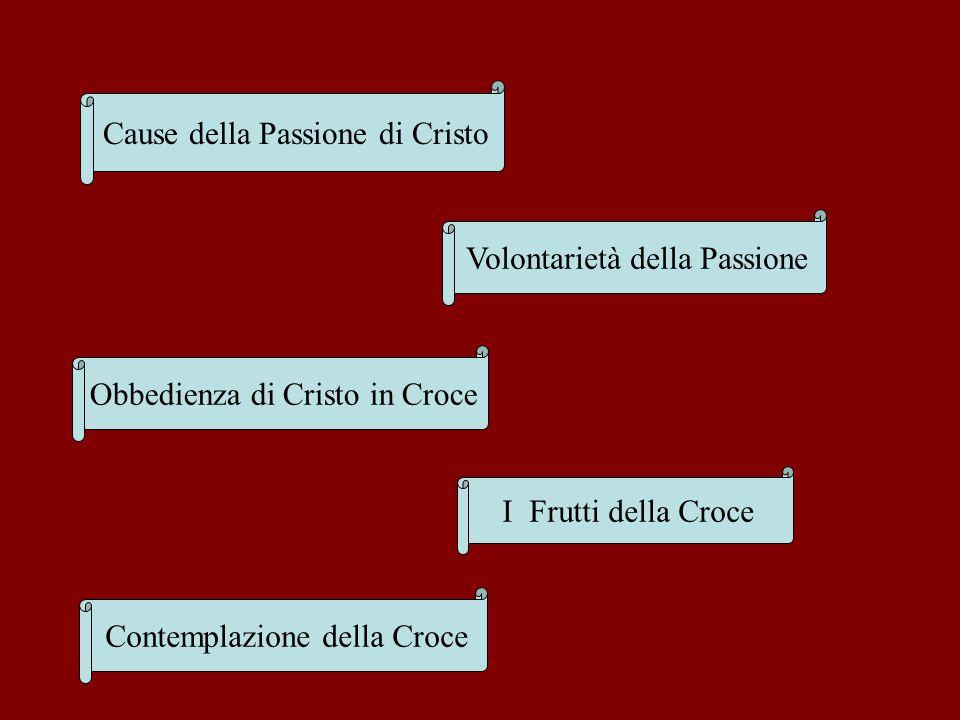 Cause della Passione di Cristo Volontarietà della Passione Obbedienza di Cristo in Croce I Frutti della Croce Contemplazione della Croce