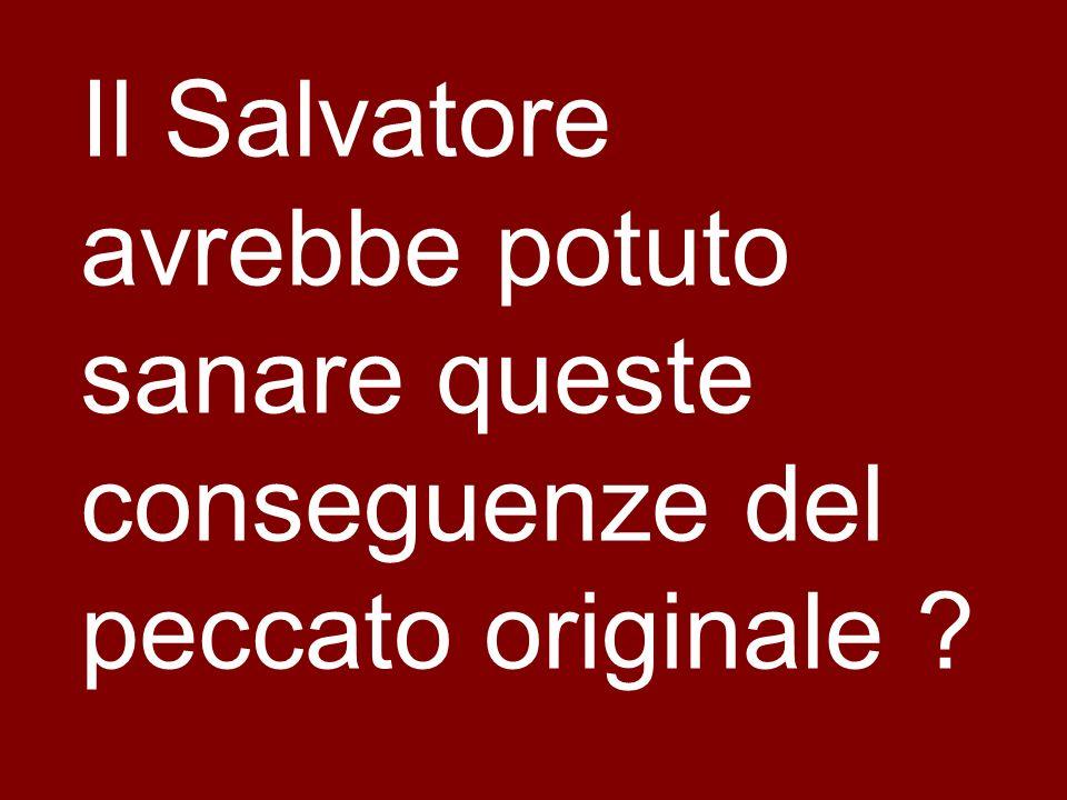 Il Salvatore avrebbe potuto sanare queste conseguenze del peccato originale ?
