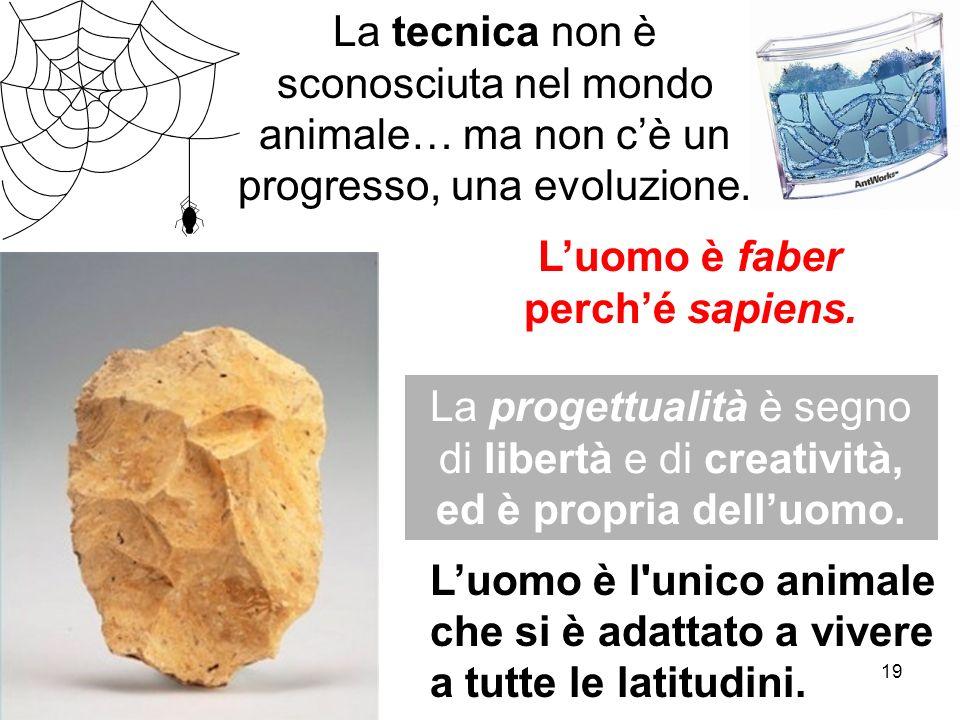 19 Luomo è faber perché sapiens. Luomo è l'unico animale che si è adattato a vivere a tutte le latitudini. La progettualità è segno di libertà e di cr