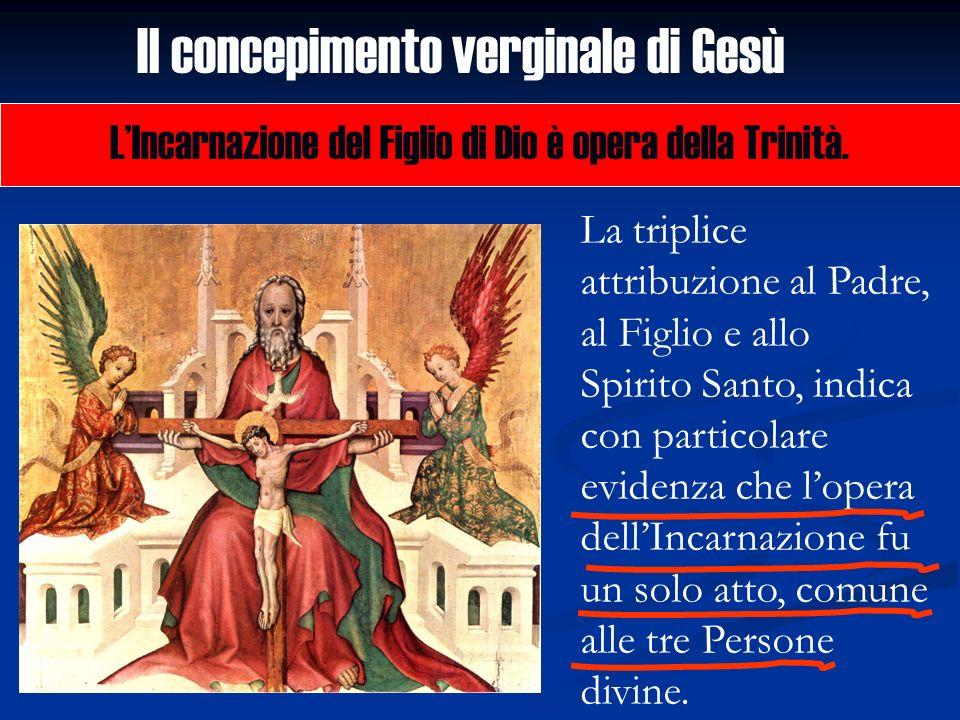 Il concepimento verginale di Gesù LIncarnazione del Figlio di Dio è opera della Trinità. La triplice attribuzione al Padre, al Figlio e allo Spirito S