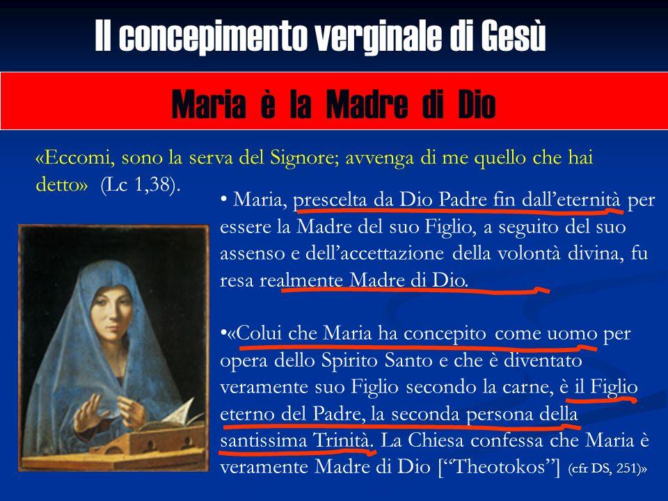 Il concepimento verginale di Gesù Maria è la Madre di Dio «Eccomi, sono la serva del Signore; avvenga di me quello che hai detto» (Lc 1,38). Maria, pr