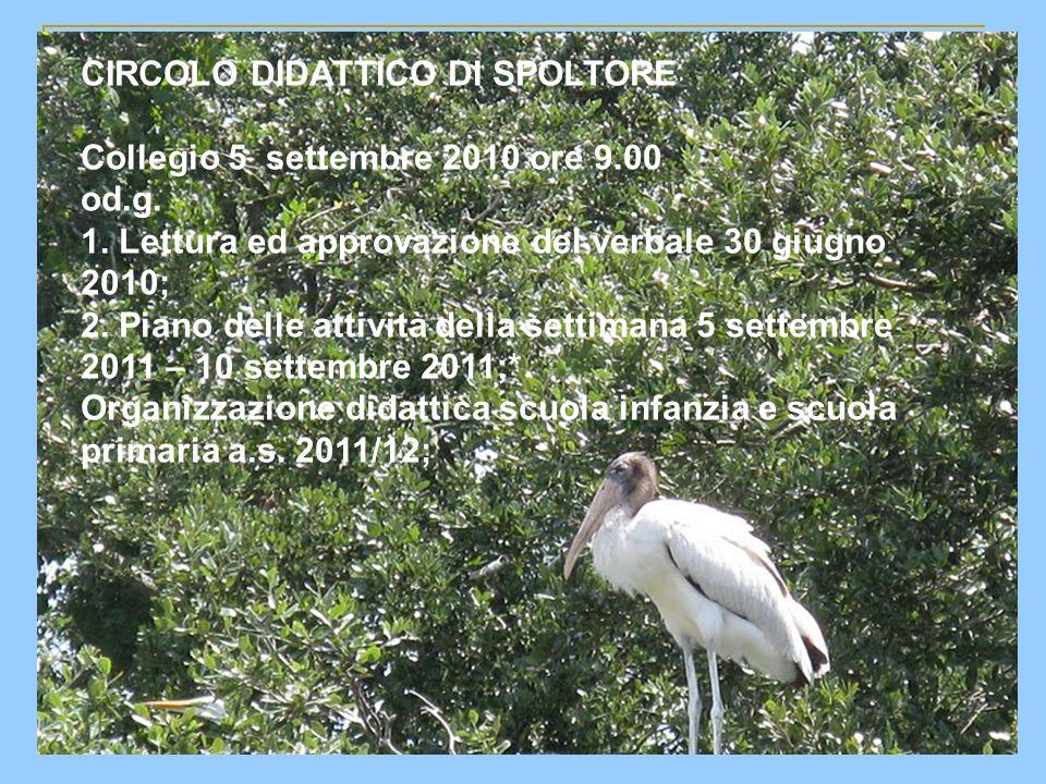 CIRCOLO DIDATTICO DI SPOLTORE Collegio 5 settembre 2010 ore 9.00 od.g.