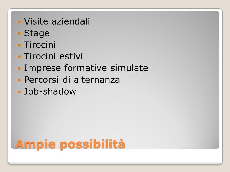 Ampie possibilità Visite aziendali Stage Tirocini Tirocini estivi Imprese formative simulate Percorsi di alternanza Job-shadow