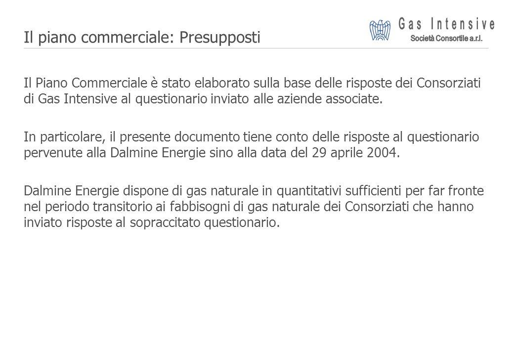 ©2004 Dalmine Energie | Page 4 | Il piano commerciale: Presupposti Il Piano Commerciale è stato elaborato sulla base delle risposte dei Consorziati di