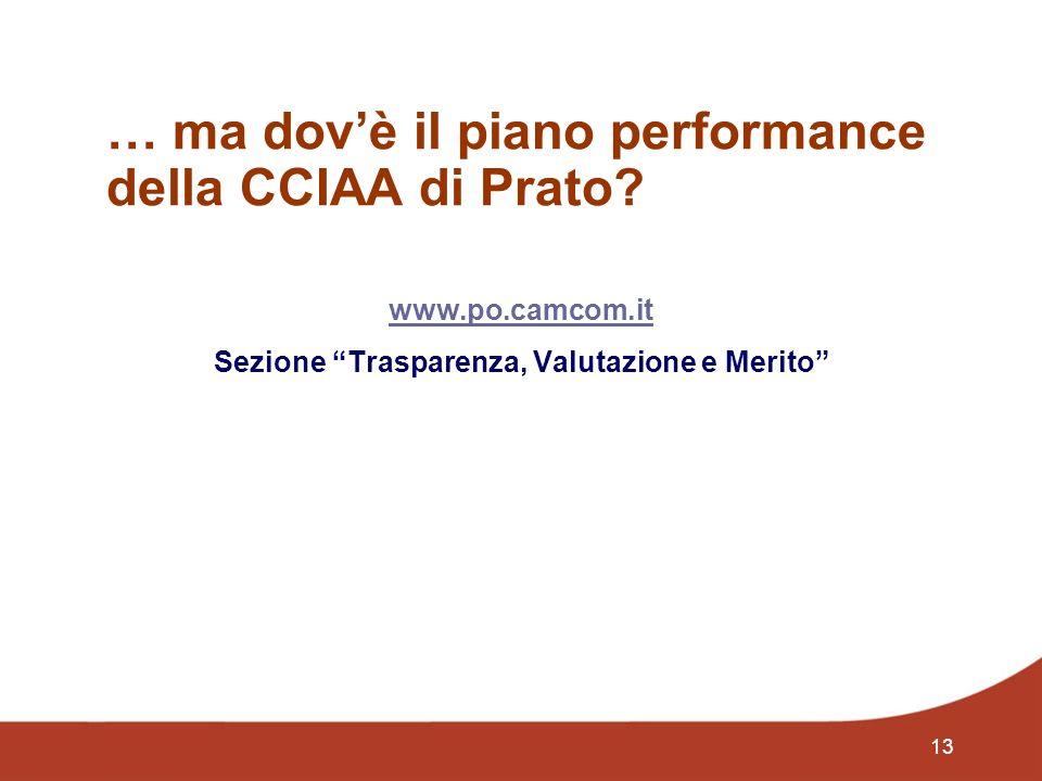 13 … ma dovè il piano performance della CCIAA di Prato.