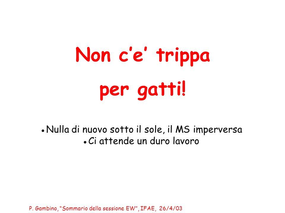 P. Gambino, Sommario della sessione EW, IFAE, 26/4/03 Non ce trippa per gatti.