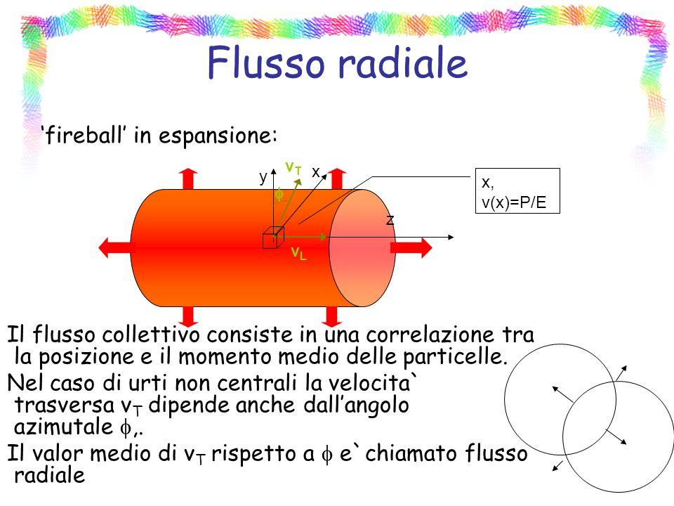 Flusso radiale fireball in espansione: Il flusso collettivo consiste in una correlazione tra la posizione e il momento medio delle particelle.