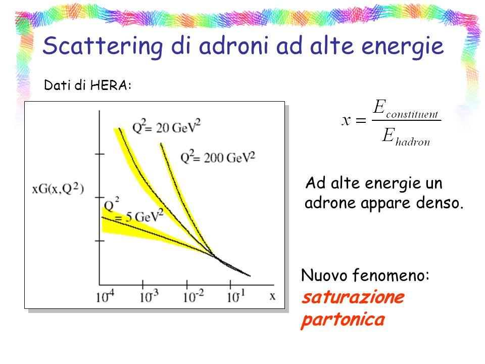 Scattering di adroni ad alte energie Nuovo fenomeno: saturazione partonica Dati di HERA: Ad alte energie un adrone appare denso.