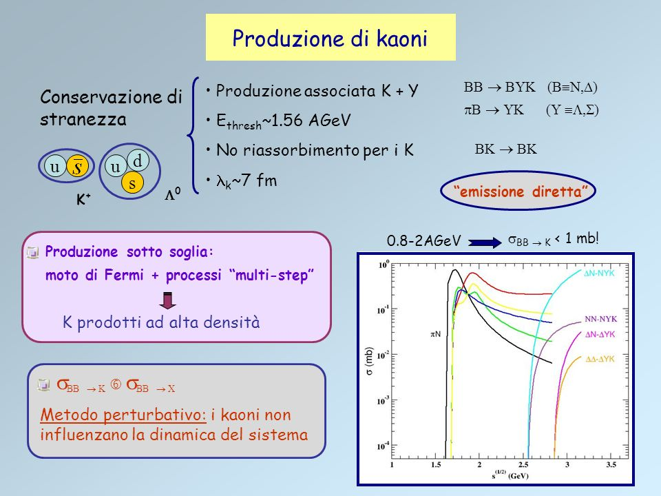 Il potenziale e gli effetti del mezzo sui kaoni Effetti osservabili: Approcci: CPT (Chiral Perturbation Theory) BEM (Boson Exchange Model) Relazioni di dispersione: Massa efficace: Distribuzione azimutale Flusso trasverso Soglia di produzione