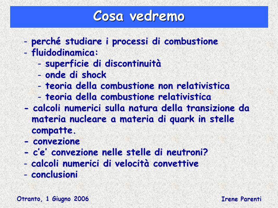 Otranto, 1 Giugno 2006 Irene Parenti Cosa vedremo - perché studiare i processi di combustione - fluidodinamica: - superficie di discontinuità - onde d