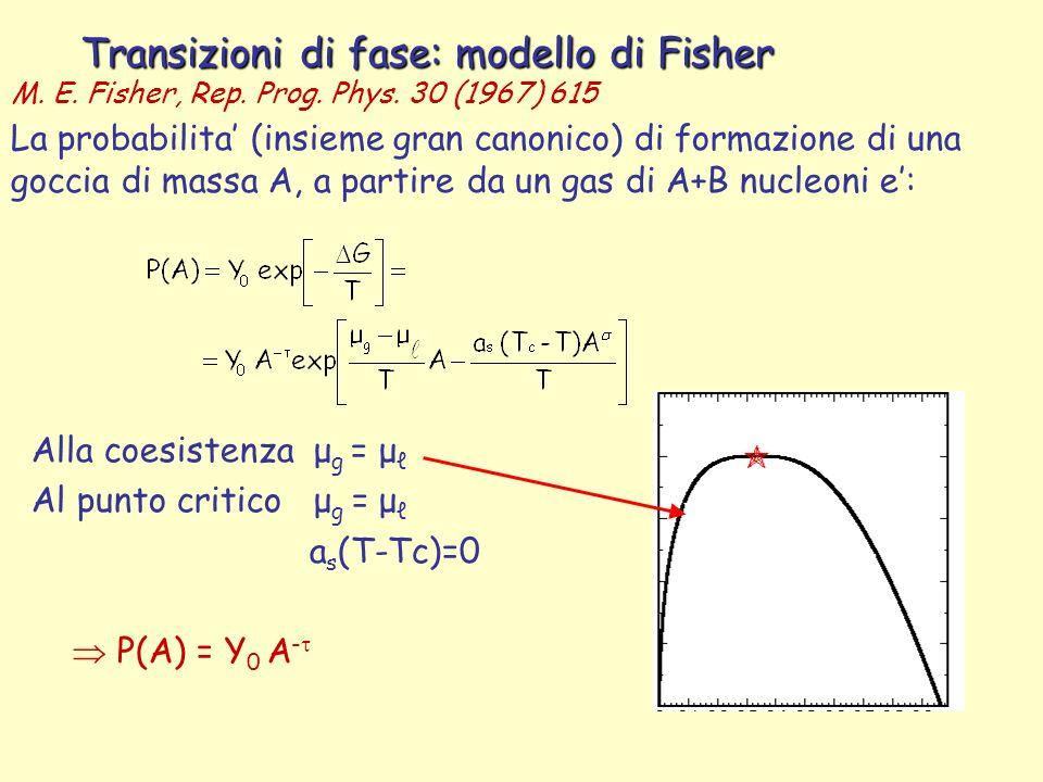 Transizioni di fase: modello di Fisher La probabilita (insieme gran canonico) di formazione di una goccia di massa A, a partire da un gas di A+B nucleoni e: Alla coesistenza μ g = μ Al punto critico μ g = μ a s (T-Tc)=0 P(A) = Y 0 A - M.
