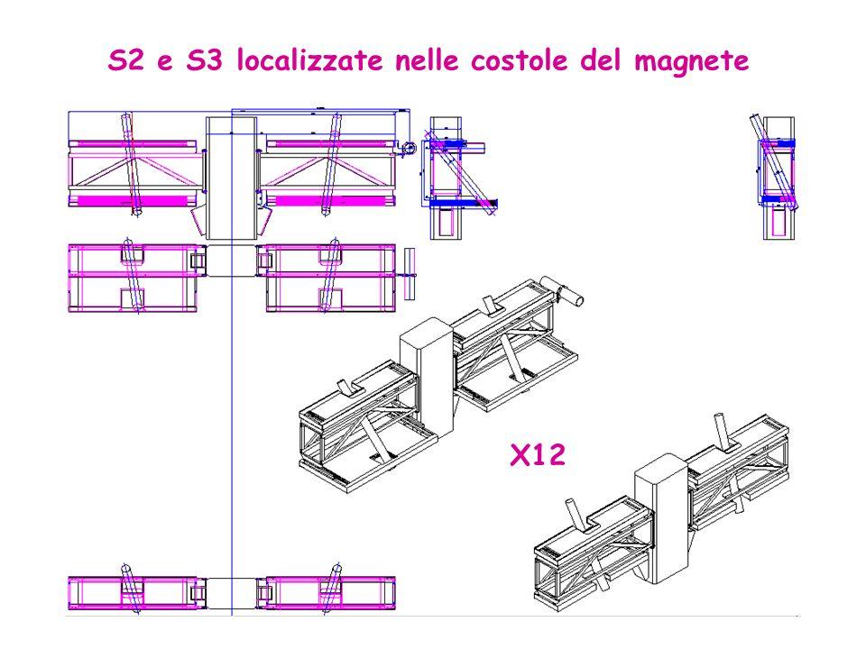 S2 e S3 localizzate nelle costole del magnete X12