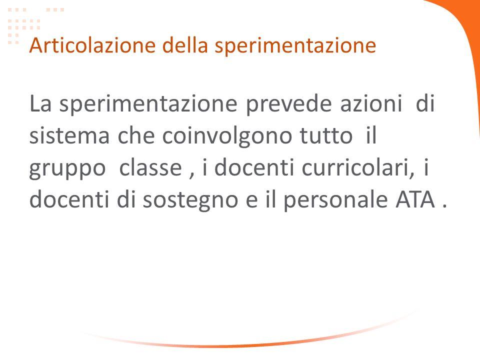 Articolazione della sperimentazione La sperimentazione prevede azioni di sistema che coinvolgono tutto il gruppo classe, i docenti curricolari, i docenti di sostegno e il personale ATA.