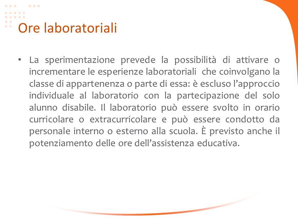 Ore laboratoriali La sperimentazione prevede la possibilità di attivare o incrementare le esperienze laboratoriali che coinvolgano la classe di appart
