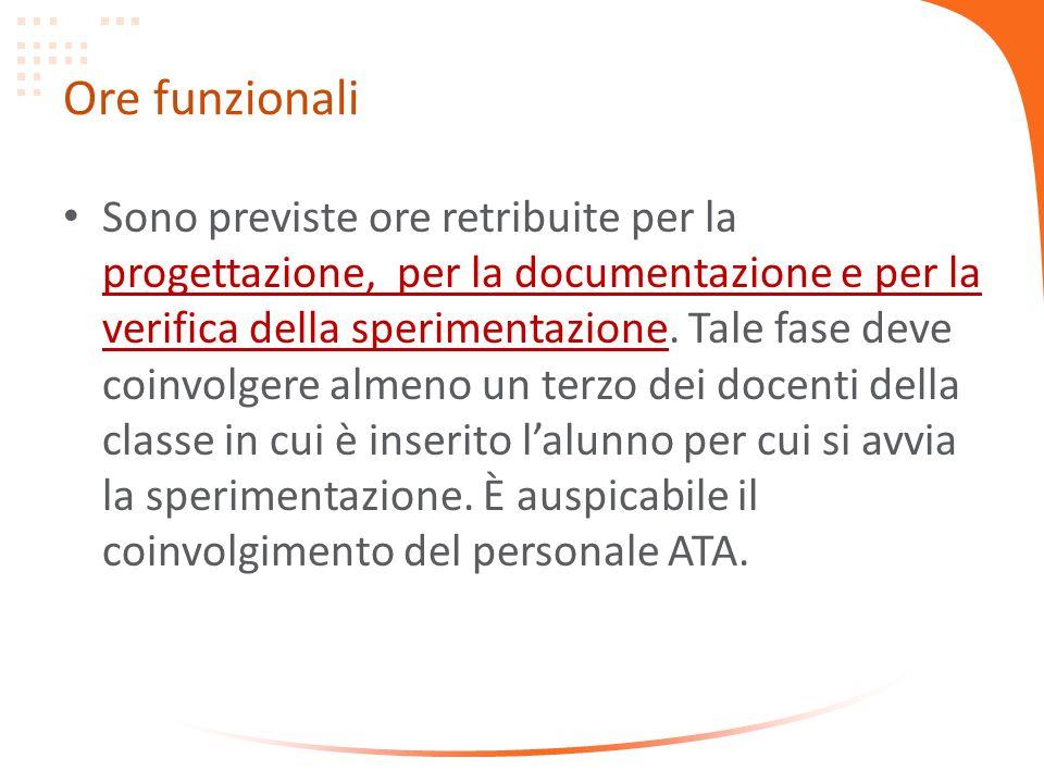 Ore funzionali Sono previste ore retribuite per la progettazione, per la documentazione e per la verifica della sperimentazione.