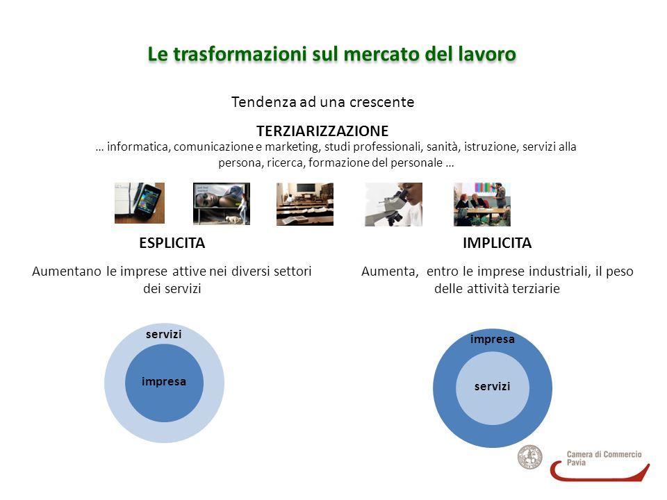 Grafico 8 Distribuzione settoriale dei laureati 2007 inseriti a Pavia nel 2007-2008 (Fonte: Area ricerca Formaper – Specula Lombardia, elaborazioni su dati Università e OML delle province lombarde e Infocamere)