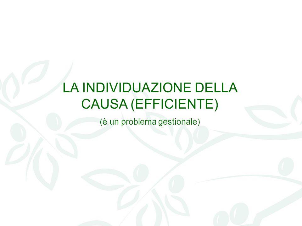 LA INDIVIDUAZIONE DELLA CAUSA (EFFICIENTE) (è un problema gestionale)