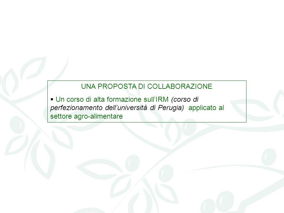 UNA PROPOSTA DI COLLABORAZIONE Un corso di alta formazione sullIRM (corso di perfezionamento delluniversità di Perugia) applicato al settore agro-alim