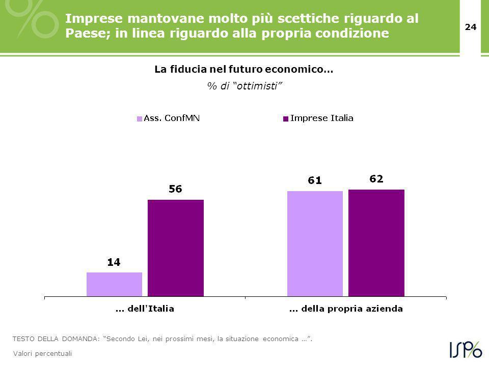 24 La fiducia nel futuro economico… % di ottimisti Imprese mantovane molto più scettiche riguardo al Paese; in linea riguardo alla propria condizione TESTO DELLA DOMANDA: Secondo Lei, nei prossimi mesi, la situazione economica ….