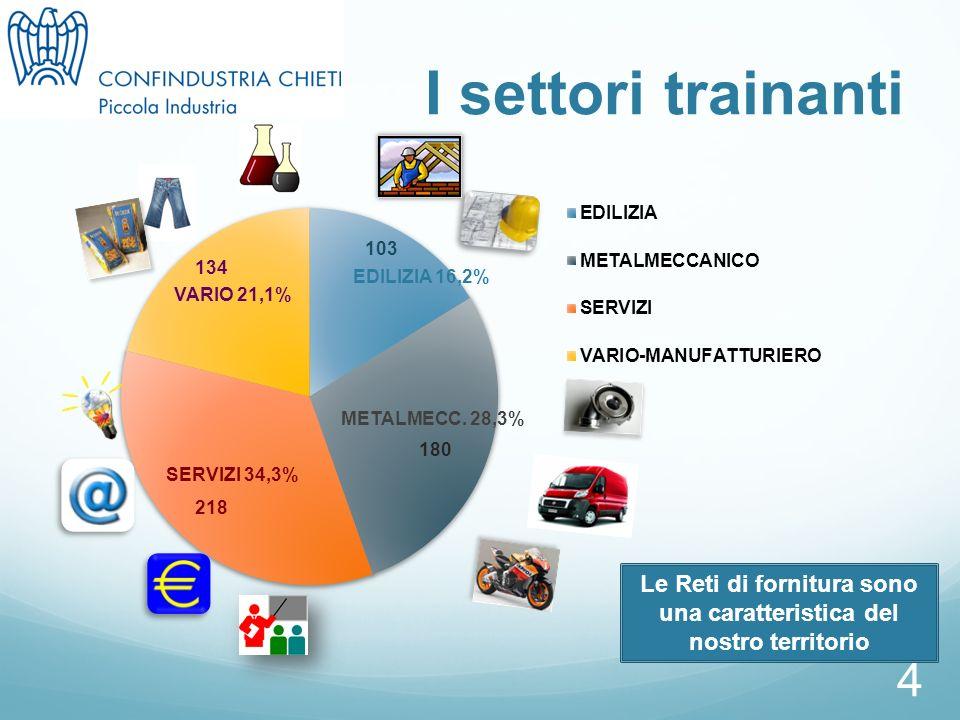4 I settori trainanti Le Reti di fornitura sono una caratteristica del nostro territorio EDILIZIA 16,2% VARIO 21,1% SERVIZI 34,3% METALMECC.
