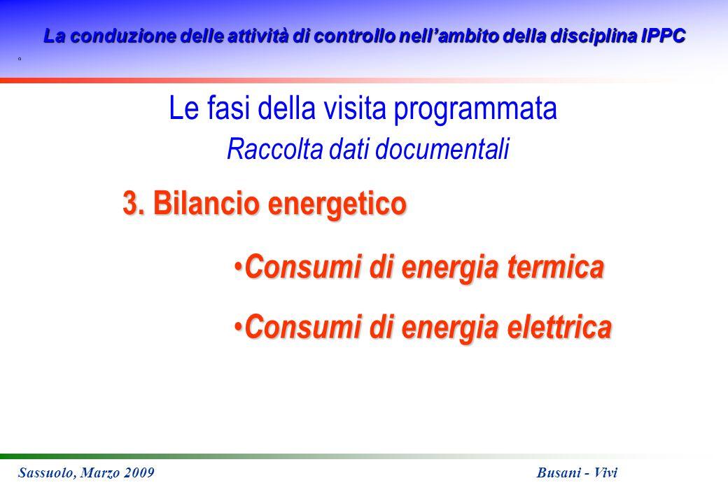 La conduzione delle attività di controllo nellambito della disciplina IPPC Sassuolo, Marzo 2009 Busani - Vivi 3. Bilancio energetico Consumi di energi