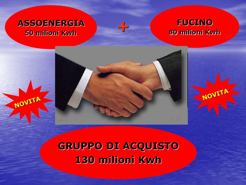 FUCINO 80 milioni Kwh ASSOENERGIA 50 milioni Kwh GRUPPO DI ACQUISTO 130 milioni Kwh + NOVITA