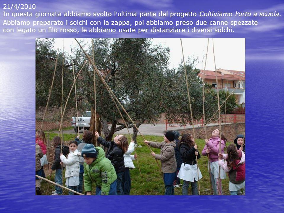 21/4/2010 In questa giornata abbiamo svolto l ultima parte del progetto Coltiviamo l orto a scuola. Abbiamo preparato i solchi con la zappa, poi abbia