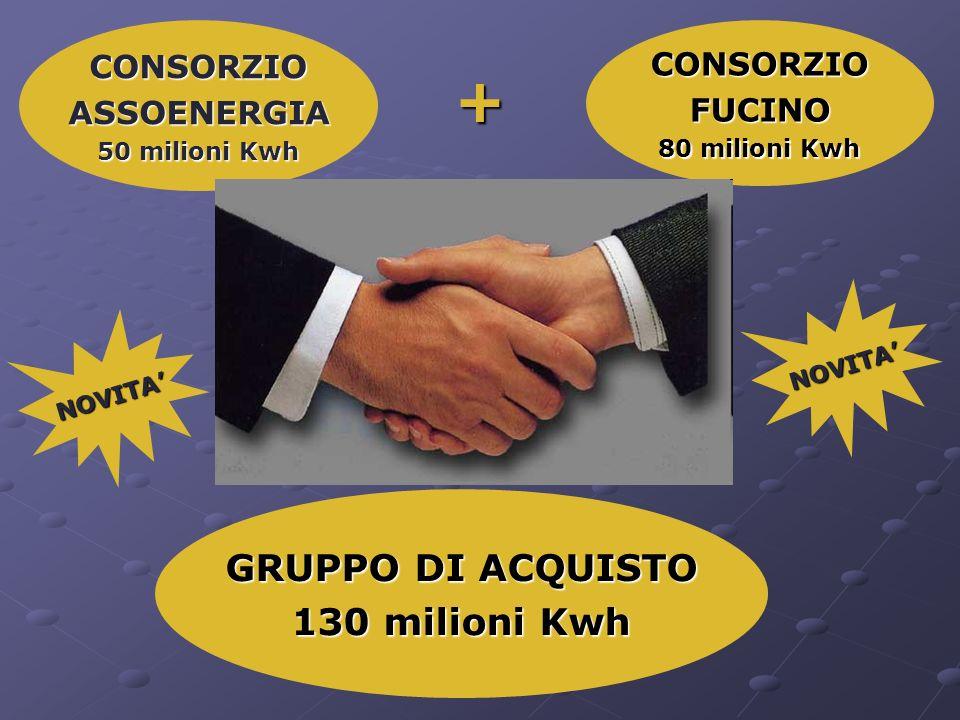 CONSORZIOFUCINO 80 milioni Kwh CONSORZIOASSOENERGIA 50 milioni Kwh GRUPPO DI ACQUISTO 130 milioni Kwh + NOVITA NOVITA