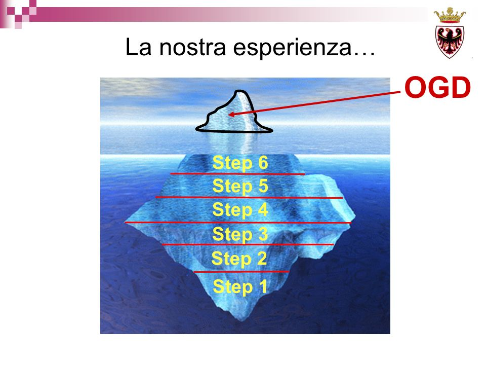 La nostra esperienza… OGD Step 1 Step 2 Step 3 Step 4 Step 5 Step 6