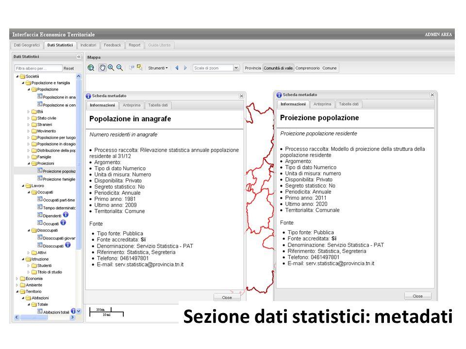 Sezione dati statistici: metadati