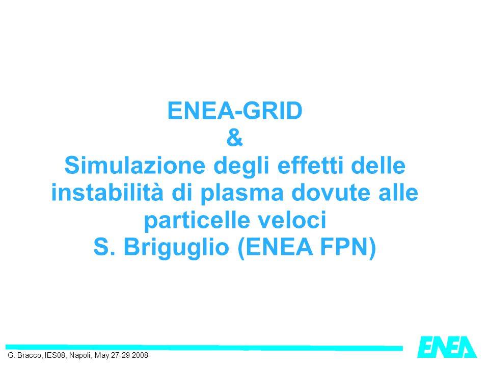 ENEA-GRID & Simulazione degli effetti delle instabilità di plasma dovute alle particelle veloci S.