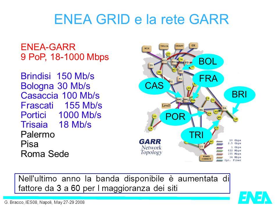 Le risorse di calcolo in ENEA-GRID: Hardware: ~100 hosts e ~650 cpu : IBM SP; SGI Altix & Onyx; Linux clusters 32/ia64/x86_64; Apple cluster; Windows servers.
