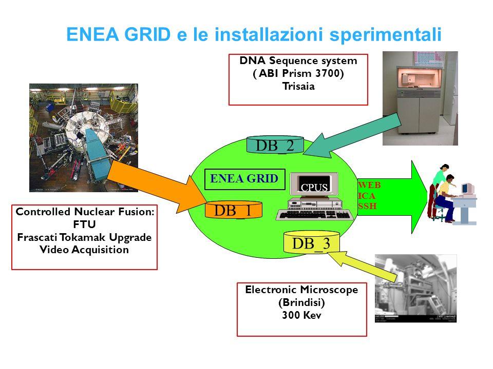 DB_1 CPUS ENEA GRID WEB ICA SSH DB_3 DB_2 ENEA GRID e le installazioni sperimentali Electronic Microscope (Brindisi) 300 Kev Controlled Nuclear Fusion: FTU Frascati Tokamak Upgrade Video Acquisition DNA Sequence system ( ABI Prism 3700) Trisaia