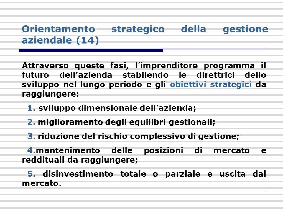 Orientamento strategico della gestione aziendale (14) Attraverso queste fasi, limprenditore programma il futuro dellazienda stabilendo le direttrici d