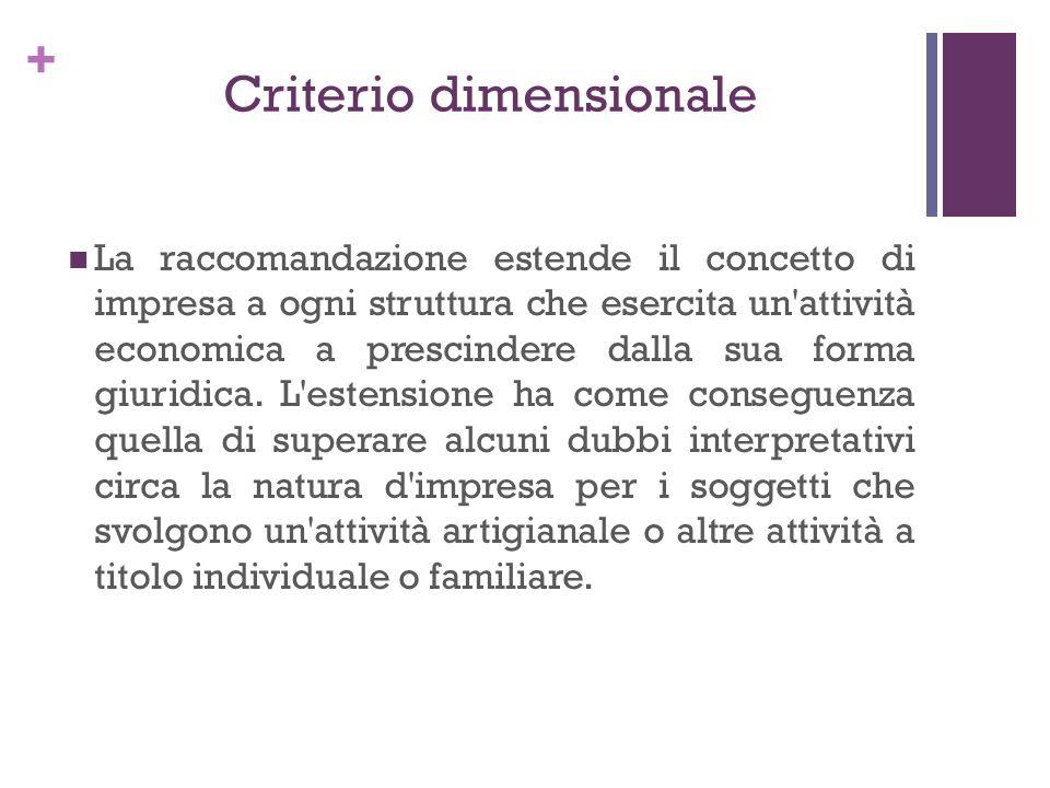 + Criterio dimensionale La raccomandazione estende il concetto di impresa a ogni struttura che esercita un'attività economica a prescindere dalla sua