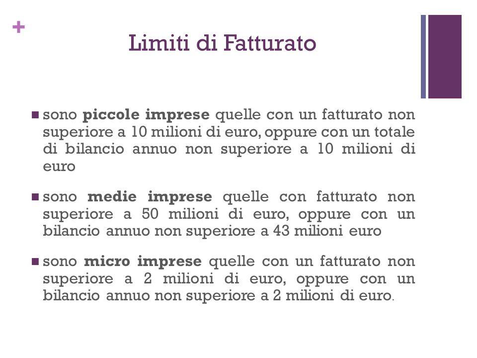 + Limiti di Fatturato sono piccole imprese quelle con un fatturato non superiore a 10 milioni di euro, oppure con un totale di bilancio annuo non supe