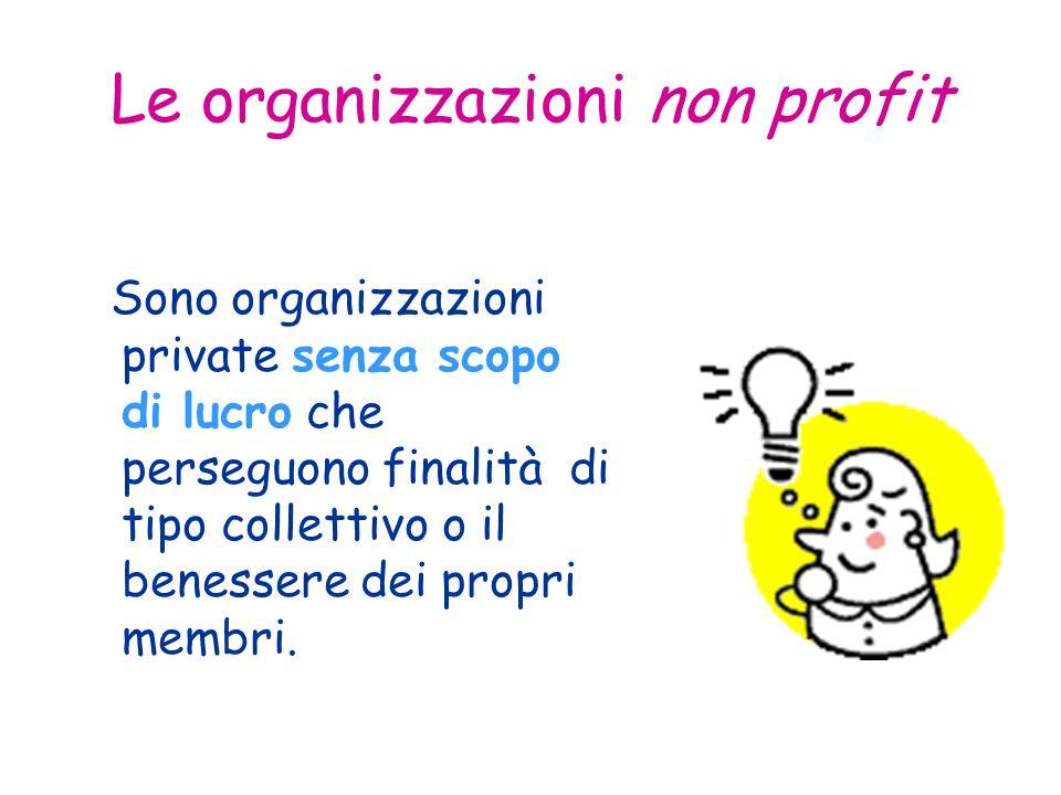 Le organizzazioni non profit Sono organizzazioni private senza scopo di lucro che perseguono finalità di tipo collettivo o il benessere dei propri membri.
