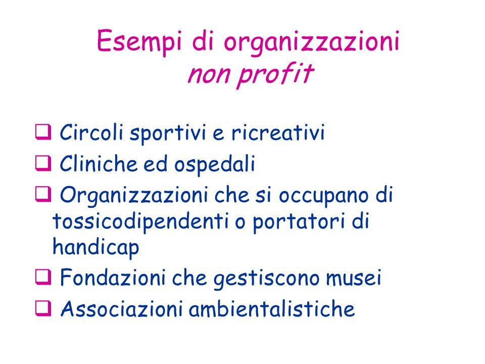 Esempi di organizzazioni non profit Circoli sportivi e ricreativi Cliniche ed ospedali Organizzazioni che si occupano di tossicodipendenti o portatori di handicap Fondazioni che gestiscono musei Associazioni ambientalistiche