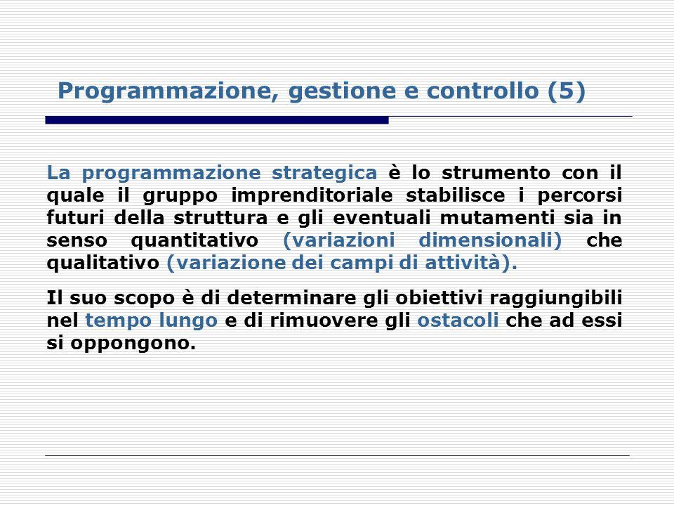 Programmazione, gestione e controllo (5) La programmazione strategica è lo strumento con il quale il gruppo imprenditoriale stabilisce i percorsi futu