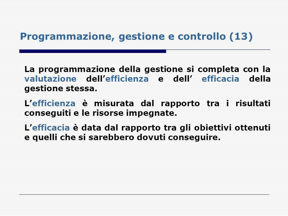 Programmazione, gestione e controllo (13) La programmazione della gestione si completa con la valutazione dellefficienza e dell efficacia della gestio