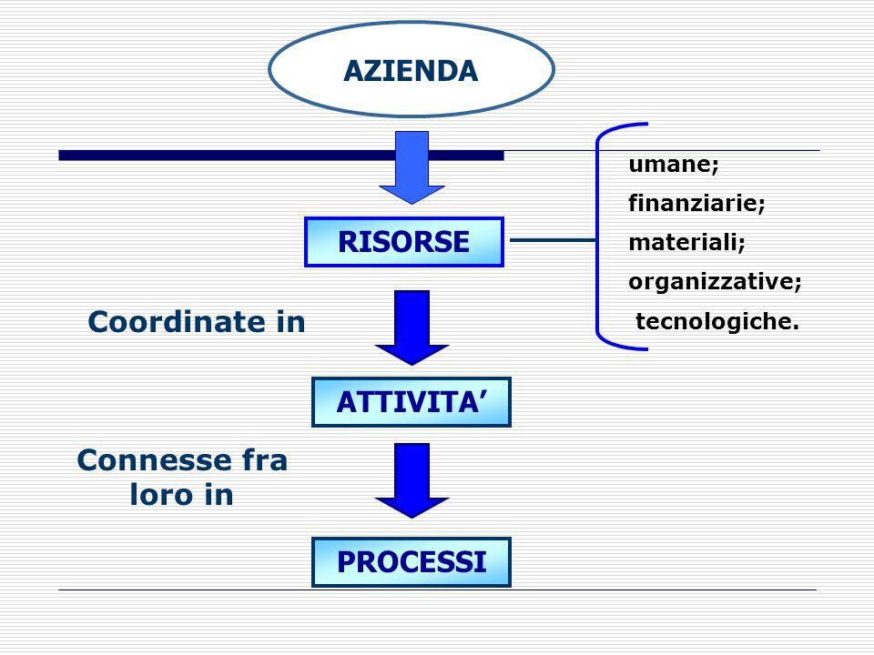 L'impresa come insieme di risorse, attività e processi (III) Le attività sono tutte le azioni che un' azienda svolge per progettare, vendere, consegna