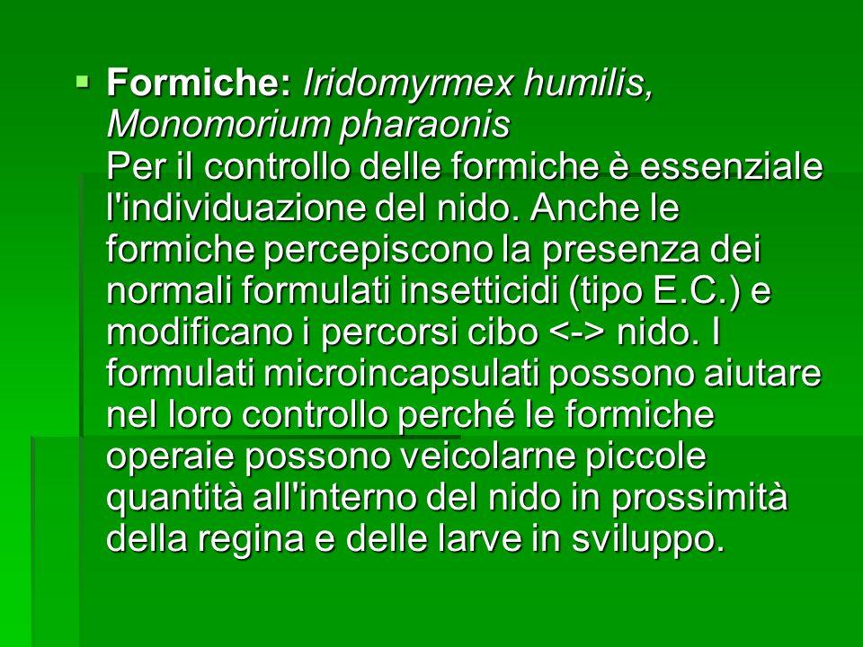 Formiche: Iridomyrmex humilis, Monomorium pharaonis Per il controllo delle formiche è essenziale l'individuazione del nido. Anche le formiche percepis