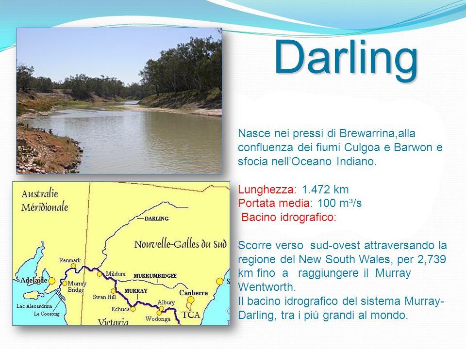 Lunghezza: 2070 km Portata media: Bacino idrografico: 80.000 km² Il fiume scorre per 2.172 Km dalla sua sorgente fino alla confluenza con il Murray.