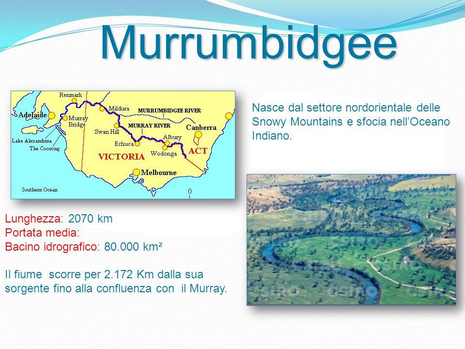 Lunghezza: 2070 km Portata media: Bacino idrografico: 80.000 km² Il fiume scorre per 2.172 Km dalla sua sorgente fino alla confluenza con il Murray. N