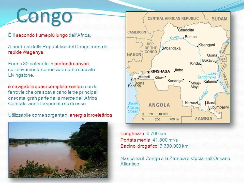 Congo Lunghezza: 4.700 km Portata media: 41.800 m³/s Bacino idrogafico: 3.680.000 km² Nasce tra il Congo e la Zambia e sfpcia nellOceano Atlantico È il secondo fiume più lungo dellAfrica.