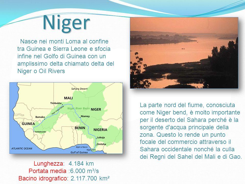 Nasce nei monti Loma al confine tra Guinea e Sierra Leone e sfocia infine nel Golfo di Guinea con un amplissimo delta chiamato delta del Niger o Oil Rivers Lunghezza: 4.184 km Portata media :6.000 m³/s Bacino idrografico: 2.117.700 km² La parte nord del fiume, conosciuta come Niger bend, è molto importante per il deserto del Sahara perché è la sorgente d acqua principale della zona.