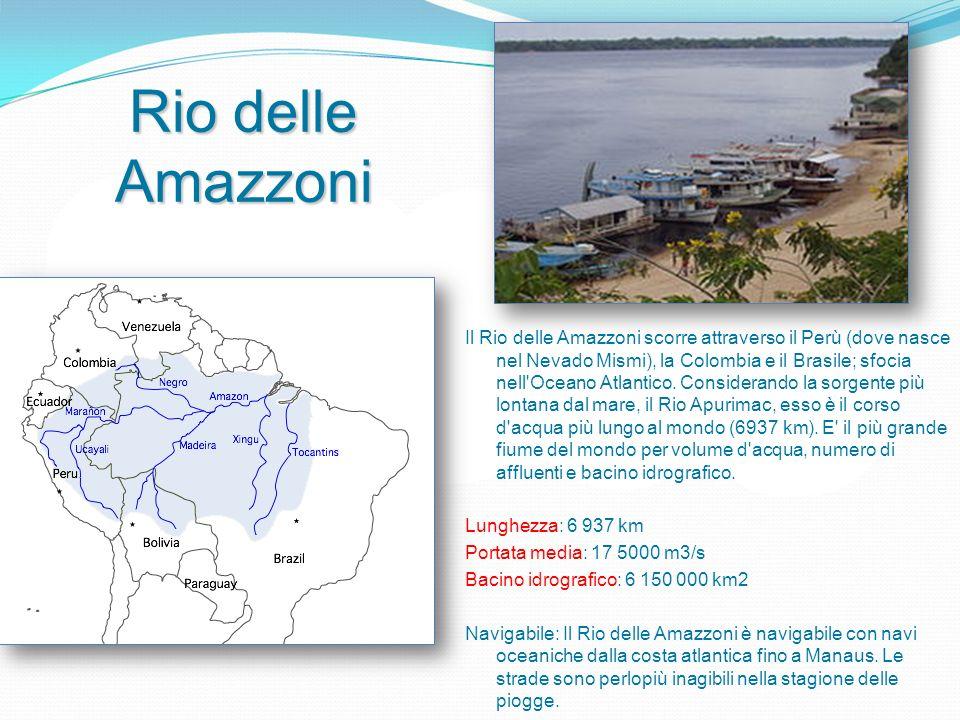 Rio delle Amazzoni Il Rio delle Amazzoni scorre attraverso il Perù (dove nasce nel Nevado Mismi), la Colombia e il Brasile; sfocia nell Oceano Atlantico.