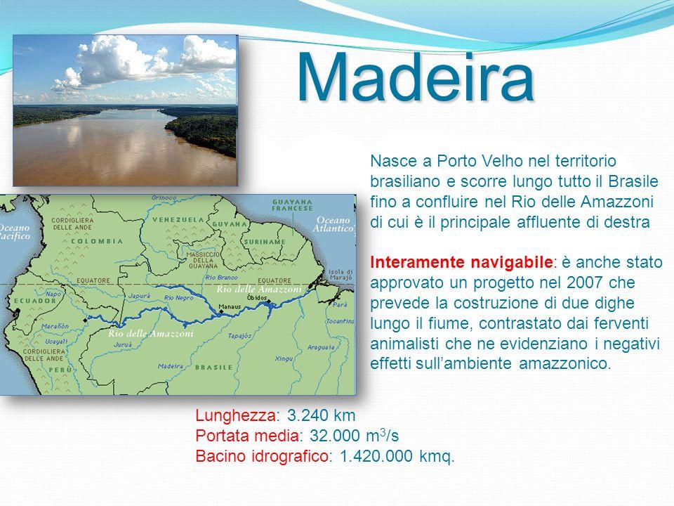 Nasce a Porto Velho nel territorio brasiliano e scorre lungo tutto il Brasile fino a confluire nel Rio delle Amazzoni di cui è il principale affluente di destra.